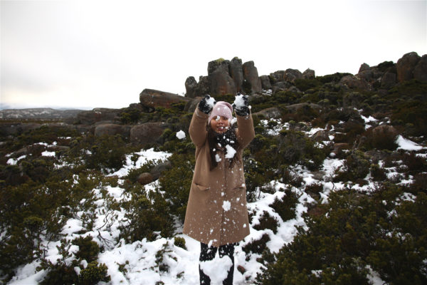 Mount Wellington / Tasmania