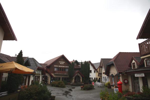 Grindelwald launceston