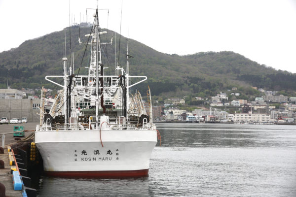 Kanemori & Bay / Hakodate 35