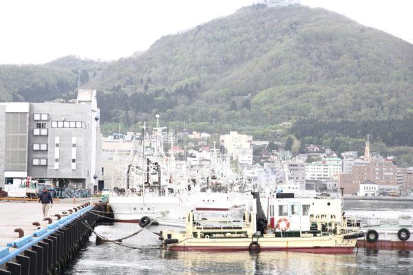 Kanemori & Bay / Hakodate 36