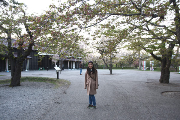 Goryokaku 20 / Hakodate