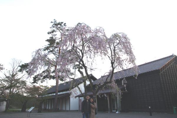 Goryokaku 22 / Hakodate