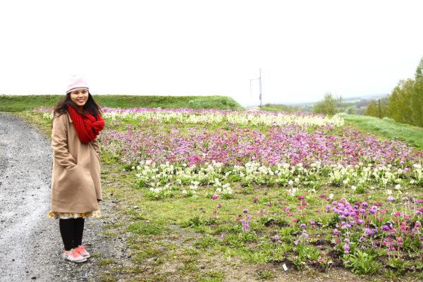 Farm Tomita 16 / Furano