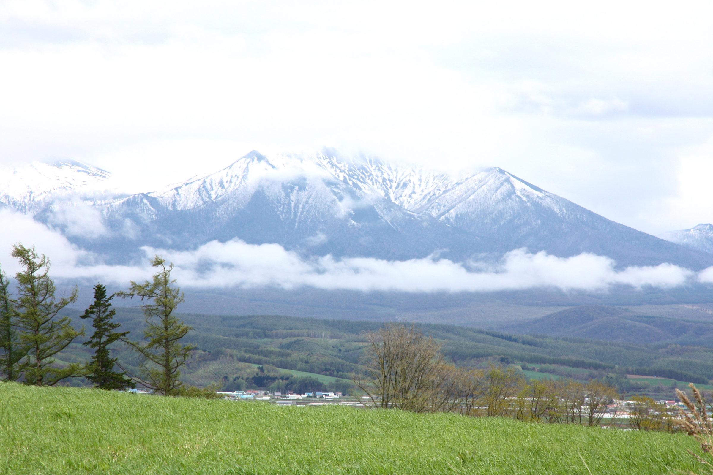 A Day in Furano & Biei (Photos)
