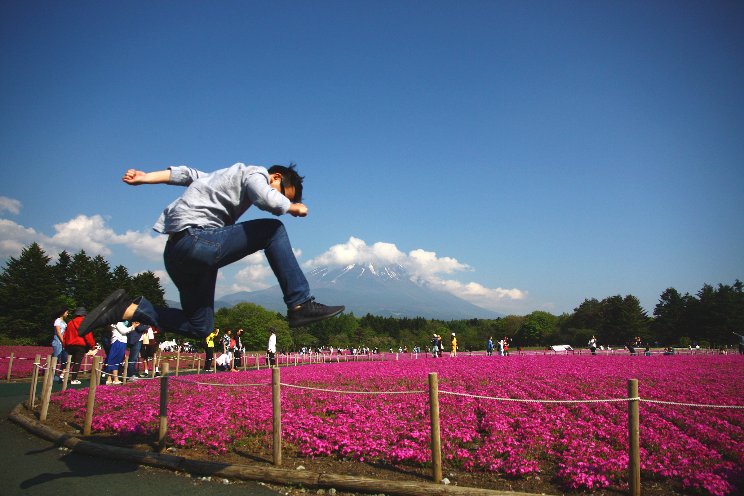 From Tokyo to Mount Fuji: What to Do If You're Not Into Climbing or Hiking (Map Included)