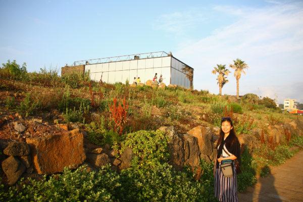 Aewol Monsant 24 / Jeju