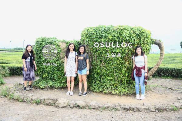 O'Sulloc Tea Museum 31 / Jeju